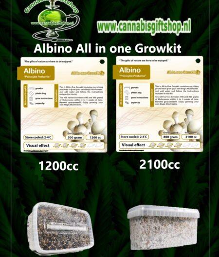Albino All in one Growkit