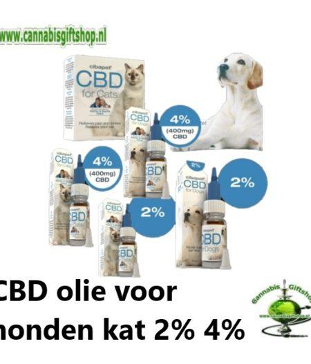 CBD olie voor honden kat 2% 4%