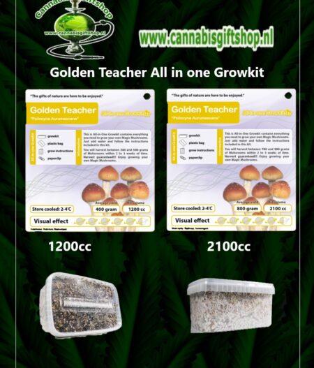 Golden Teacher All in one Growkit