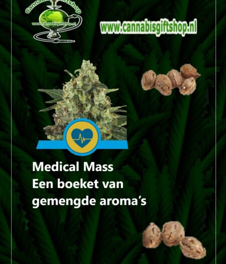 Cannabis gift shop Medical Mass seeds