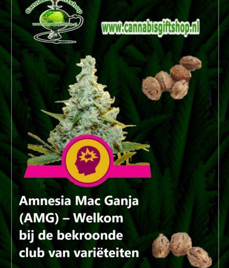 Cannabis giftshop Amnesia Mac Ganja amg