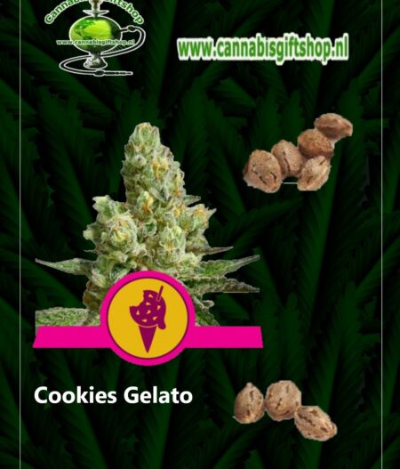 Cannabis giftshop Cookies Gelato