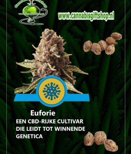 Cannabis giftshop Euforie cbd