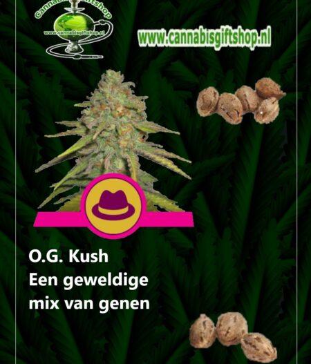 Cannabis giftshop OG Kush