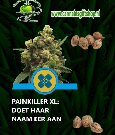 Cannabis giftshop PAINKILLER XL