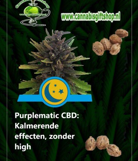 Purplematic CBD: Kalmerende effecten, zonder high