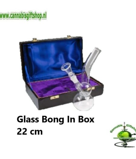 Glass Bong In Box 22 cm