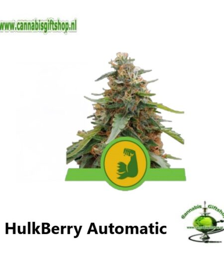 HulkBerry Automatic