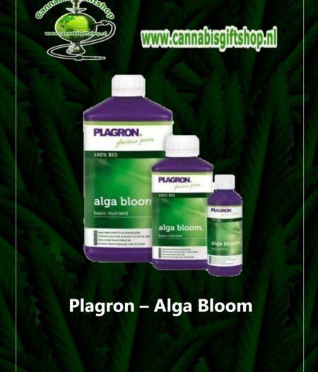 Plagron – Alga Bloom