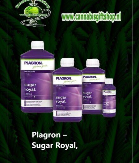 Plagron – Sugar Royal,