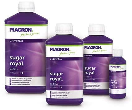 Plagron - Sugar Royal,