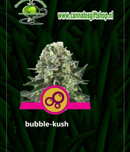 cannabis giftshop bubble-kush