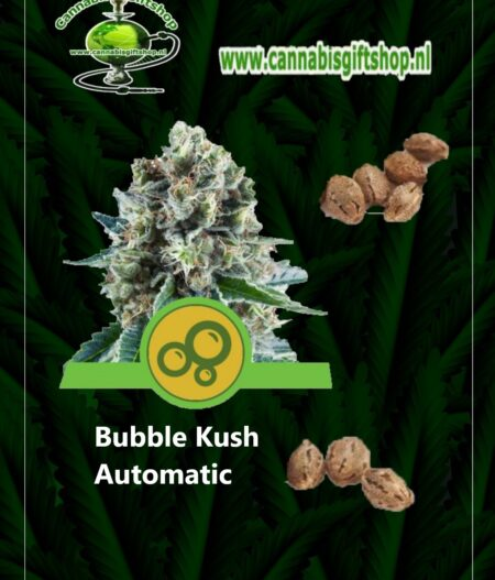 cannabis giftshop Bubble Kush Automatic