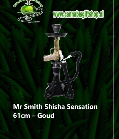 Mr Smith Shisha Sensation 61cm – Goud