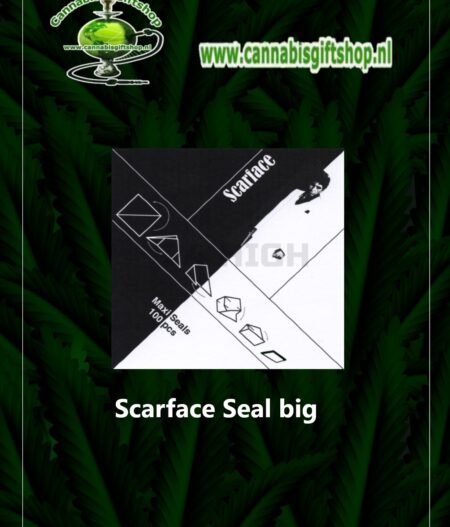 scarface seal big