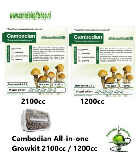 Cambodian All-in-one Growkit