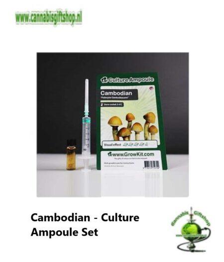 Cambodian - Culture Ampoule Set
