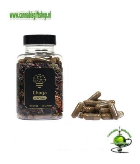 Chaga extract capsules – 120 stuks