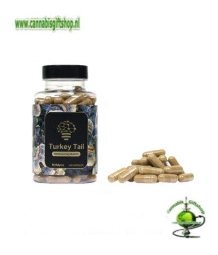 Turkey Tail extract capsules – 120 stuks